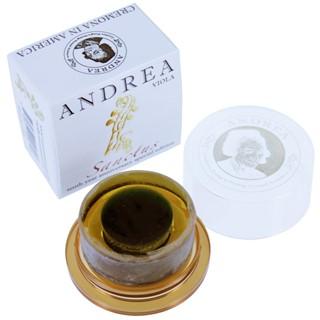 Andrea Sanctus pece per viola